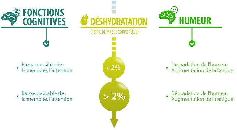 Episode No Stress N'Autre Monde Podcast Hydratation et stress études Hydratation for health